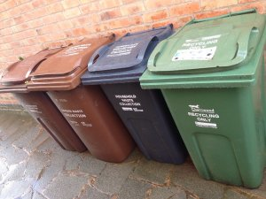 Brown Bin Collection